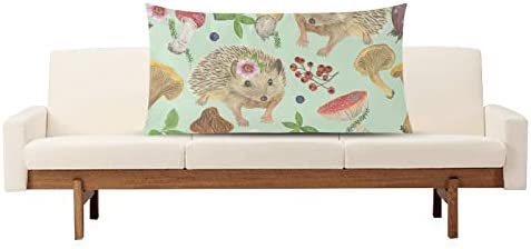 Amazon Com Outdoor Pillows Covers Lovely Little Animals Hedgehogs And Mushrooms Fun Pillow Cases 1 Pack 20 X 36 Inch Hidden Zipper Home Sofa Living Room Office Cushion Decorative Home Kitchen