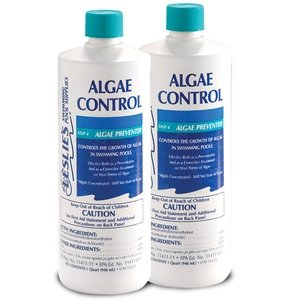 Leslie s algae control preventer for pools 1 quart 2 garden outdoor Swimming pool algae treatment