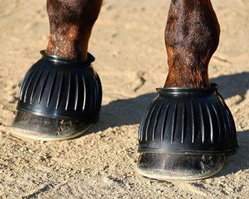 Professional's Choice Pull On Rubber Bell Boots (Bell Boots For Horses)