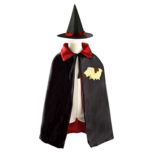 Toddler Cow Costume Diy (DIY Diogee Milo Murphy's Law Costumes Party Dress Up Cape Reversible with Wizard Witch Hat)