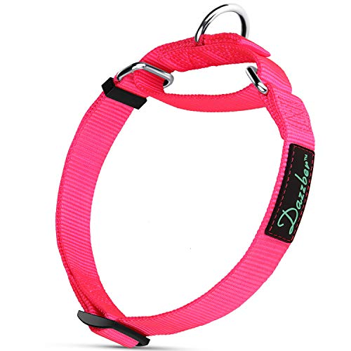 Dazzber Martingale Collars for Dogs, Strong and Durable, Medium, Hot Pink, Heavy Duty Adjustable Nylon Dog Collar