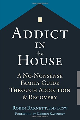 Addict in the House: A No-Nonsense Family Guide