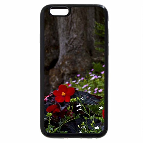 iPhone 6S / iPhone 6 Case (Black) nature tree english flowers garden