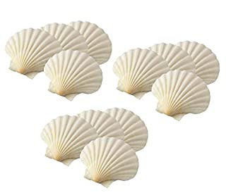 HIC Harold Import Co. 45678/3 Maine Man Baking Shells, 4 Inch, Set of 12, Natural Seashell (B0772NQTGG) | Amazon price tracker / tracking, Amazon price history charts, Amazon price watches, Amazon price drop alerts