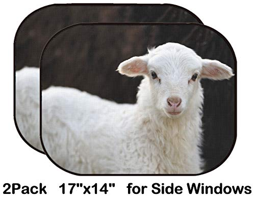 Liili Car Sun Shade for Side Rear Window Blocks UV Ray Sunlight Heat - Protect Baby and Pet - 2 Pack White Lamb on The Black Background Photo 19812084