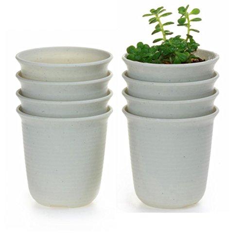 T4U 5.75 Inch Plastic Round Succulent Plant Pot/Cactus Plant Pot Flower Pot/Container/Planter Package 1 Pack of 8