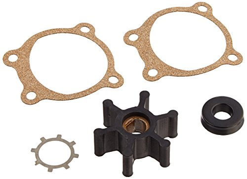 wayne-66059-wyn1-pc2-brush-and-impeller-kit