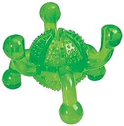 Grriggles Fundamentals Treat Jack Chew Toy, Parrot Green