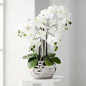 Dahlia Studios White Phalaenopsis 23″ H Faux Orchid in Silver Ceramic Pot