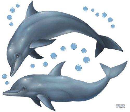 Dolphin Mural (Create-A-Mural Dolphin Wall)