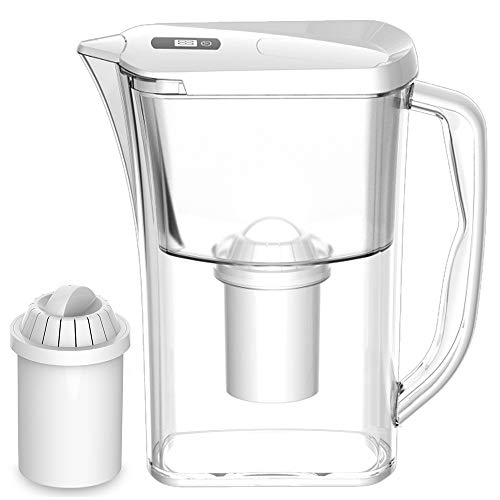 ion carafe filters - 8