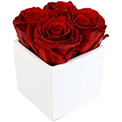 "Luxe Bloom Home Collection | 4 Crimson Preserved Roses in a 3"" White Ceramic Cube Vase 