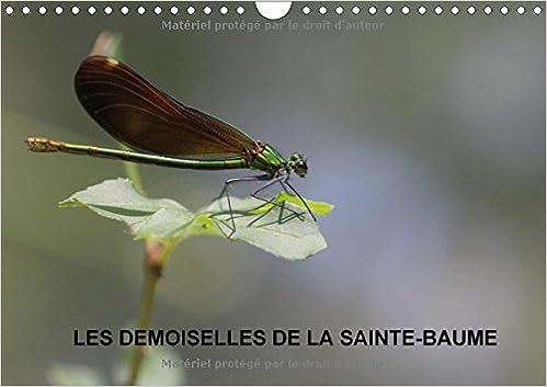 Book Les Demoiselles De La Sainte-Baume 2017: Les Demoiselles Qui Dansent Au Son Du Clapotis De L'eau (Calvendo Nature)