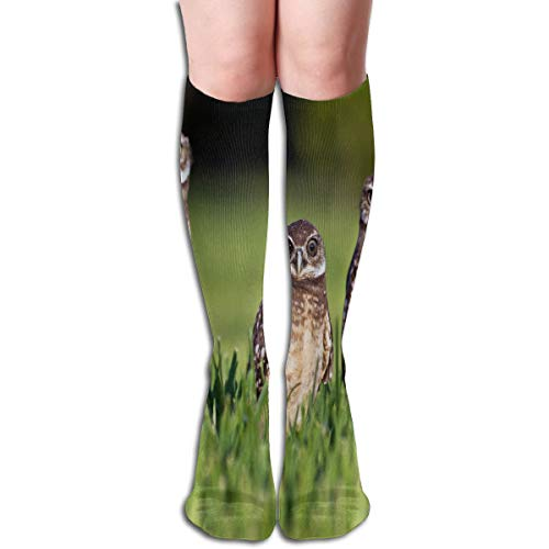 Women Socks Mid-Calf Nine Amazing Facts About Owls Winter Customized For -