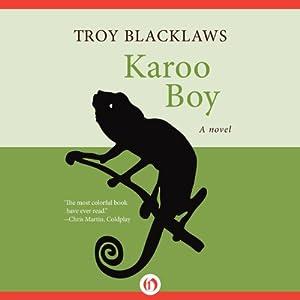 Karoo Boy Audiobook