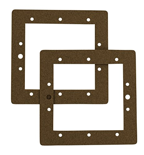 (Set of Two Hayward 1090 Gaskets for Use with Fanta Sea™ Pools)