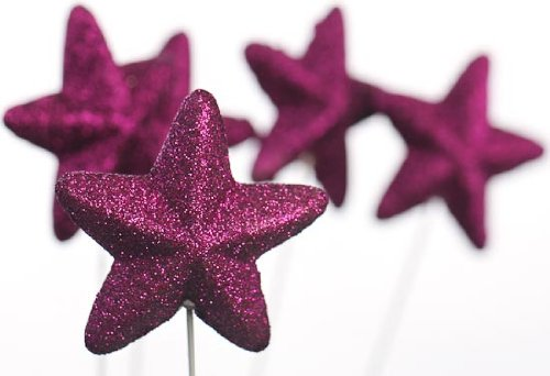 Package of 24 Purple Glittery Dimensional Star Picks