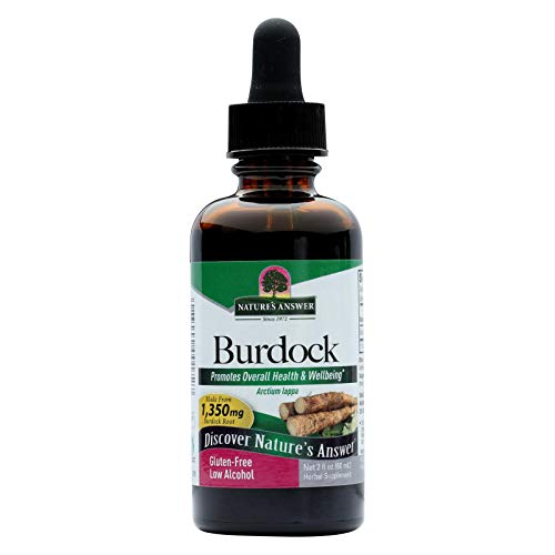 Natures Answer Burdock Root - Promotes Healthy Blood Levels- 2 fl oz (Pack of - Root Alcohol Burdock