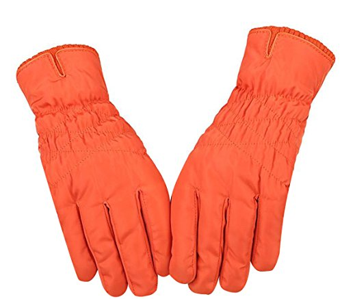 TRENDY XU Outdoor Windproof Ski Snowboard Gloves Touch Screen Gloves