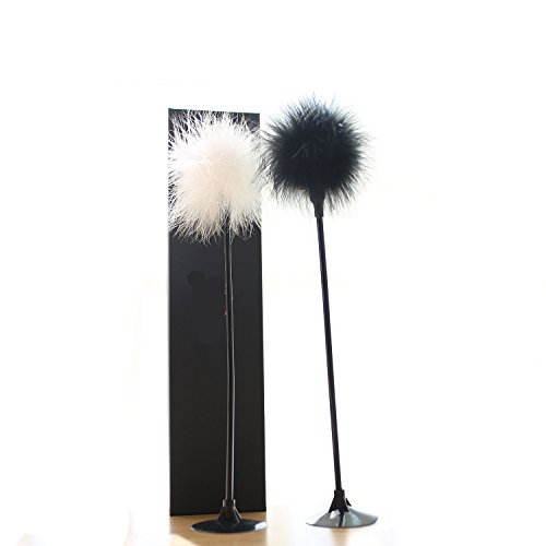 PetDroid Cat Feather Toy,Interactive Cat Teaser Wand Toy with Sucker,Bell and Ribbon (Black and White(2pcs)) Best Sellers Tile