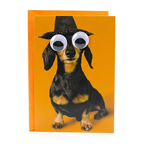Hallmark Shoebox Funny Halloween Card (Dog with Googly Eyes)