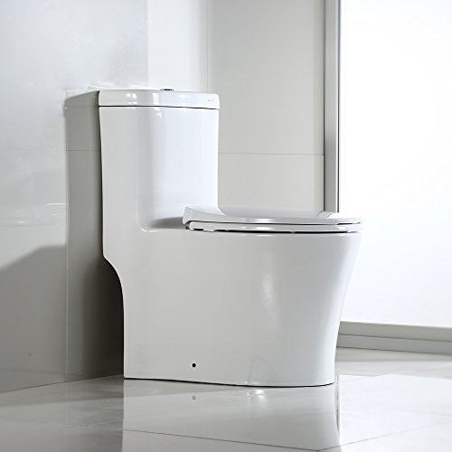 Toilet Standing One Piece Floor - WOODBRIDGE T-0033 Dual Flush Elongated One Piece Toilet with Soft Closing Seat, Elegant