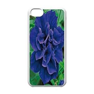 iPhone 5C Phone Case Petunia EF65946