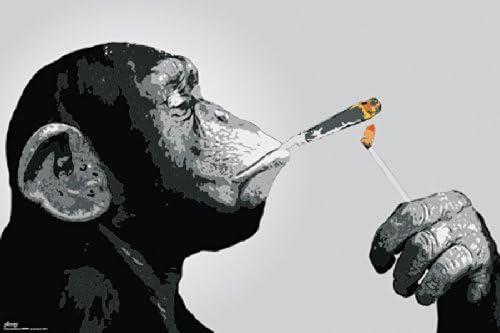 "Poster 19/"" x 13/"" Skull Smoke"
