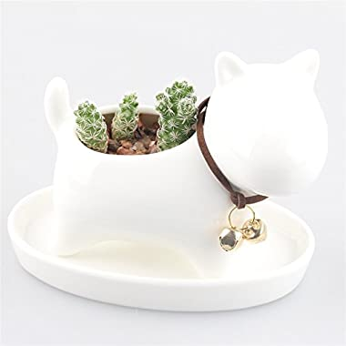 Little Cub White Ceramic Succulent Plant Flower Pot Flowerpot Planter Pots Milky White with Tray Neck with Bell Simple Modern Animal Dog Cat Cub Design Weaving Tail Small 4.3 x 3.1 x 3.46 inches