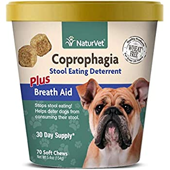 Amazon Com Cease Coprophagia Soft Chews 90 Count Pet