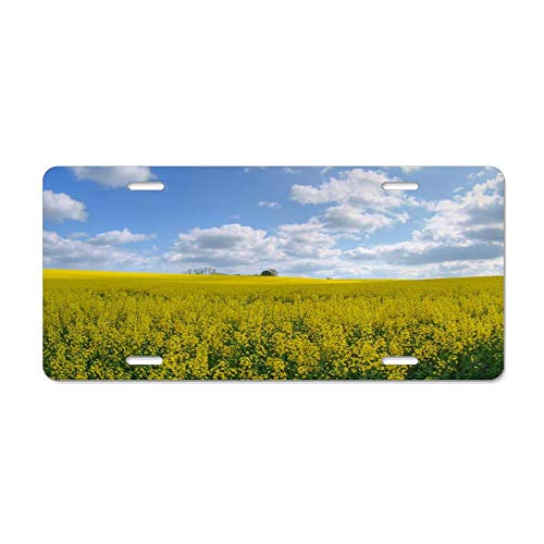 (FloralFlames Rape Crop Personalized Novelty License Plates, Custom U.S. Decorative Front for US Vehicles)