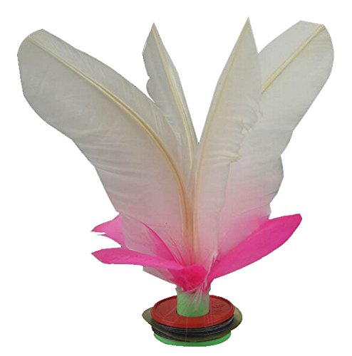 10 Pcs Professional Game Feather Kick Shuttlecock Chinese Jianzi Sport WHITE