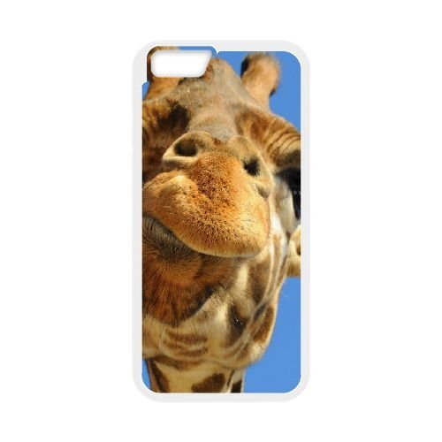 Cool Giraffes with Sunglasses iPhone 6 4.7 Inch Cell Phone Case White - Cici Sunglasses