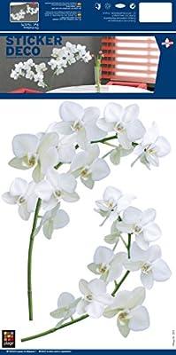PLAGE Orquídeas Adhesivos Decorativos, Vinilo, Blanco, 29,7 x 21 ...