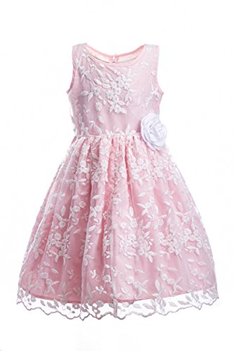 Emma Riley Girls' Sleeveless Floral Embroidered Mesh Pleated A-line Princess Party Dress, Pink Embroidery, 8 ()