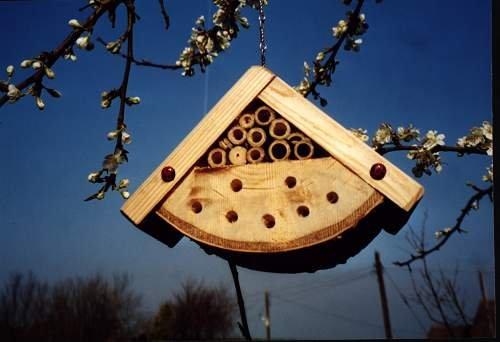 Lady Bug Box or Pollinating Bee Box