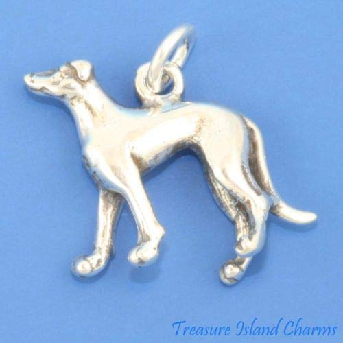 Greyhound Race Dog Breed 3D 925 Solid Sterling Silver for sale  Delivered anywhere in USA
