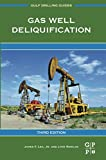 Gas Well Deliquification (Gulf Drilling Guides)