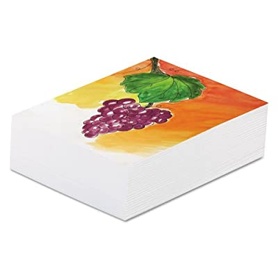 Pacon 4831 Art1st Multi Media Art Paper, 80-lb., 9 x 12, White, 500 Sheets/Ream