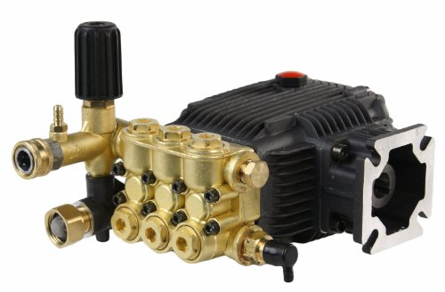 Triplex High Pressure Power Washer Pump 3.1 GPM 3000 psi 6.5 HP 3/4'' Shaft fits Cat General AR by SOLOMONE CAVALLI