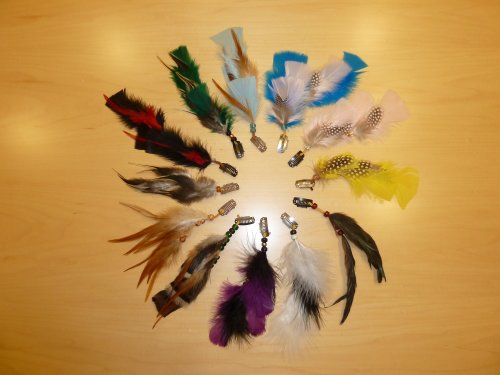 100 Clip-in Feather Hair Extensions Various Colors, No Pl...