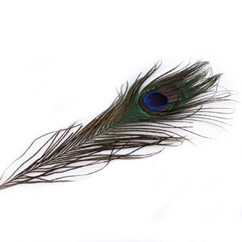 Museya 50pcs 25-30cm schöne natürliche Peacock Tail Feathers für Handwerk Kunst Kleid Hüte Braut Kostümparty
