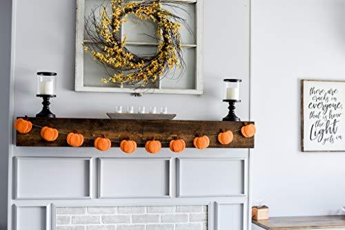 (Nivas Collection Pumpkin Felt Garland/Halloween Decor/Fall Decor/Wall Hanging)