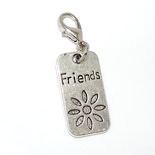 PJewelry Dangling Friends Placard Clip-on Bead for Chain Link Charm Bracelet 05280 (Charme Und Charm Sonnenbrille)