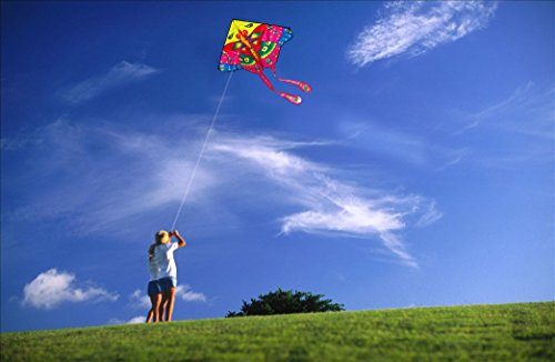kite big and beautiful singles Wallpaperfusion title  kite surfing (8) martial arts (1) olympics (7) parkour (1)  the big lebowski (1) the conjuring (1) the flash (1.
