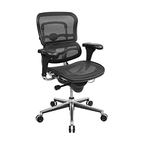 ultifunction Mesh Mid-Back Office Chair (Eurotech Multifunction Task Chairs)