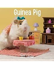 Guinea Pig 2022 Calendar: Guinea Pig 2022-2023 Calendar, 18 Months