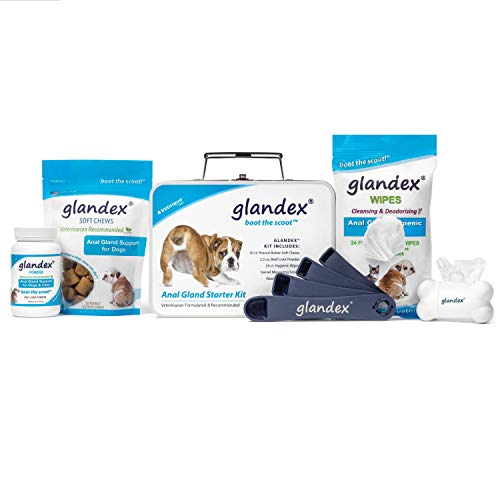 Gland Kit - Glandex Anal Gland Support Starter Kit Fiber Supplement for Dogs with Pumpkin, Digestive Enzymes & Probiotics Contains Beef Liver Powder, Peanut Butter Soft Chews, Pet Wipes and Scoop!