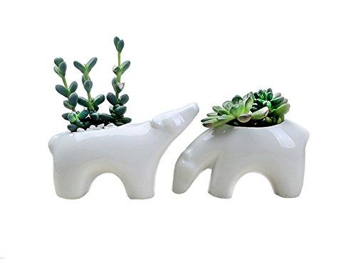 Bow Mini Desktop (Youfui Ceramic Animal Flowerpot Succulent Plants Container Desk Mini Ornaments (Pair of Polar Bear))