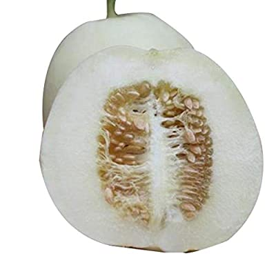 HOTUEEN 20pcs/ Bag White Muskmelon Seeds Delicious Sweet Melon Garden Fruit Fruits : Garden & Outdoor